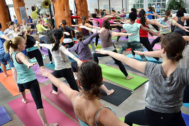 Take Your Vinyasa: Pop-Up Yoga at the Botanical Gardens