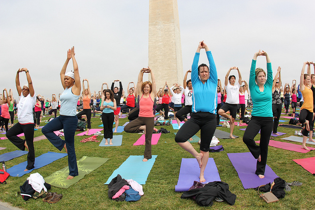 It's a Down-Dog Eat Down-Dog World: yoga culture in DC