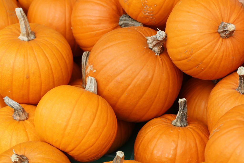 Taste Test: Pumpkin Party