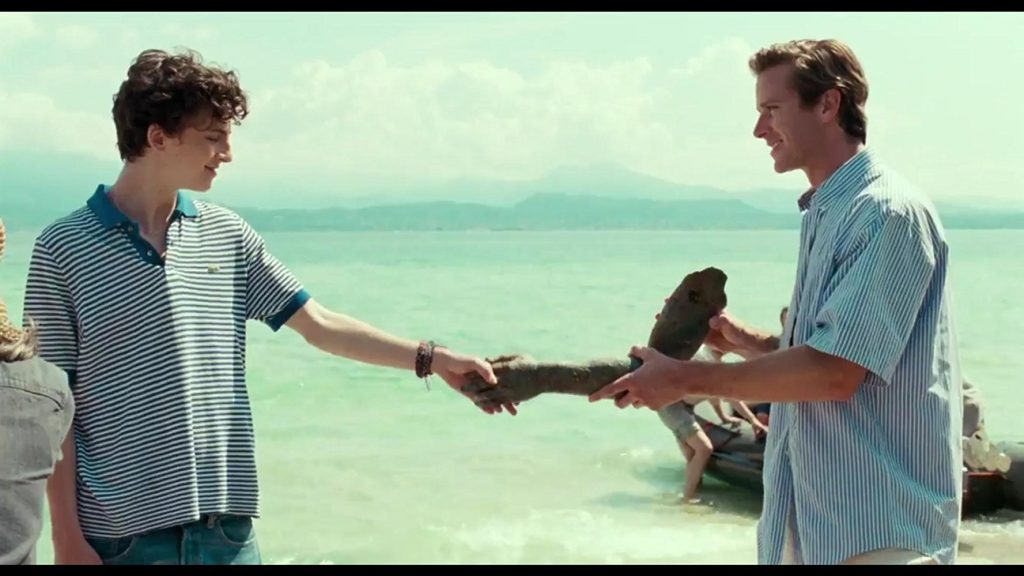 La Dolce Estate: <i>Call Me by Your Name</i> Captures Fleeting Love