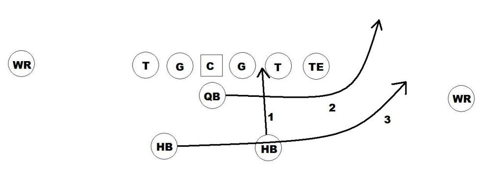 Should NFL Teams Consider Running the Triple Option  5017fd96f1b9f
