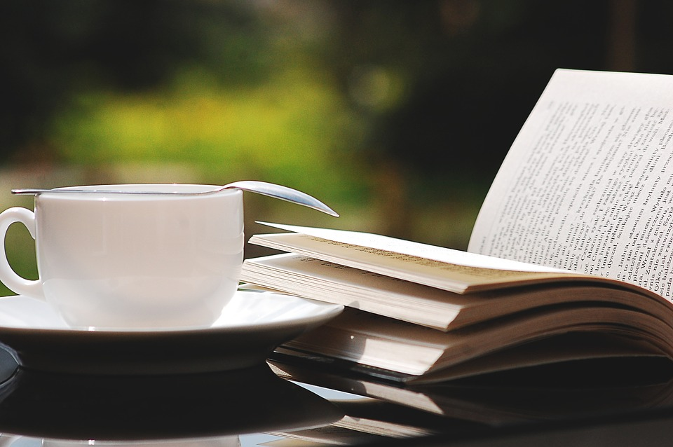 <i>Voice</i> Staffers' Favorite Summer Reads