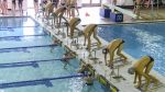 Swimming and Diving Competes at Toyota U.S. Open