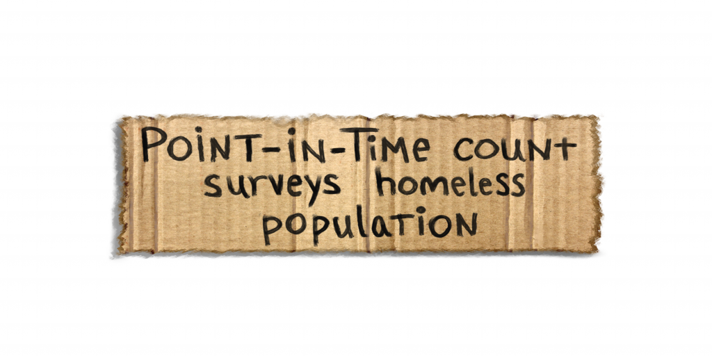 Point-in-Time Count Surveys Homeless Population