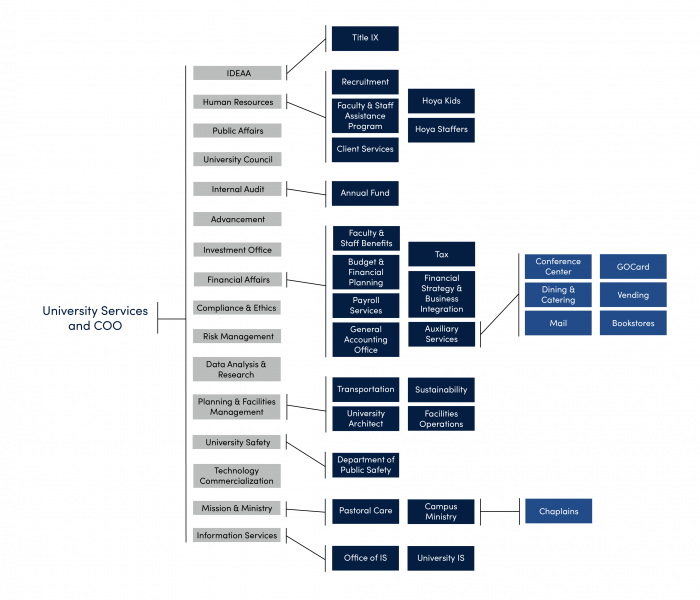 The offices of university services presented in a flowchart.